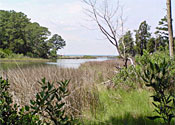 Sloop Creek Waterfront Building Lot 1.185 Acre