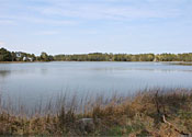 Winter Harbor 4.35 Acres 379' waterfrontage